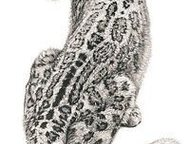 Хабаровск: Рукопашный Бой Система Унибос Унибос: Универсальная Боевая Система, Ведется набор в группу в Хабаровске  О системе рукопашного боя унибос (универсальн
