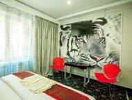 Хабаровск: Открылась новая комфортабельная гостиница Новая гостиница Энигма в шаговой доступности от Железнодорожного вокзала города. Повышенная комфортность н