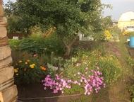 Магнитогорск: Продам сад Ухоженный сад (10 соток), земля в собственности, все посадки, 2 бака для полива, хоз. блок, хоз. постройки, место для перегноя, поликарбона