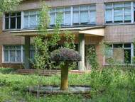 Недвижимость в Березенки. База отдыха у г. Чехов, Симферопольское шоссе, 65 км от МКАД, земля и здания в собственности, очень Недвижимость в Березенки, Москва - Коммерческая недвижимость