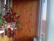 обмен 3х квартиры по Туполева Обмен или продажа квартиры 3х на дом в центральном районе или подстепки или приморском 89198158275, Тольятти - Продажа квартир